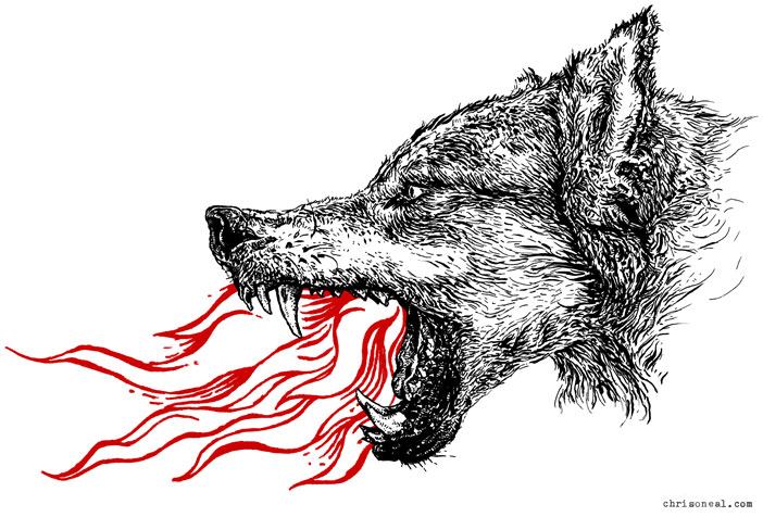 """wolf"" illustration by Chris O'Neal"