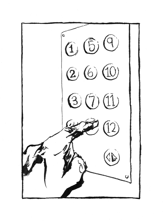 """theres no button for the 14th floor"" drawing by Chris O'Neal"