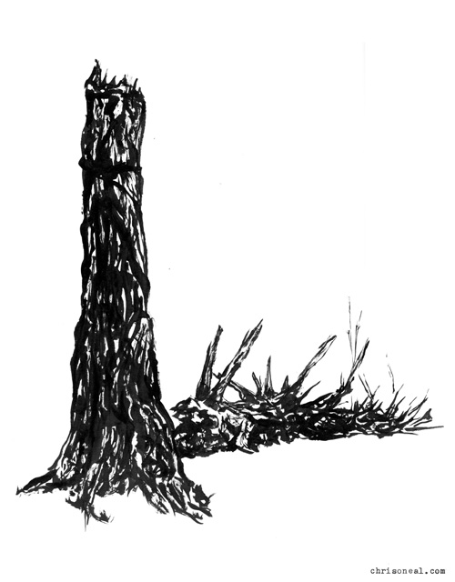 """Tree 2"" drawing by Chris O'Neal"