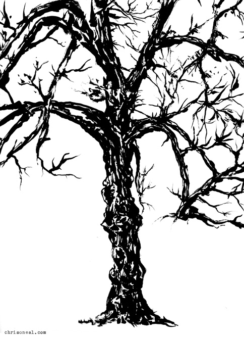 """Tree 3"" drawing by Chris O'Neal"